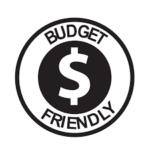 online mentoring budget